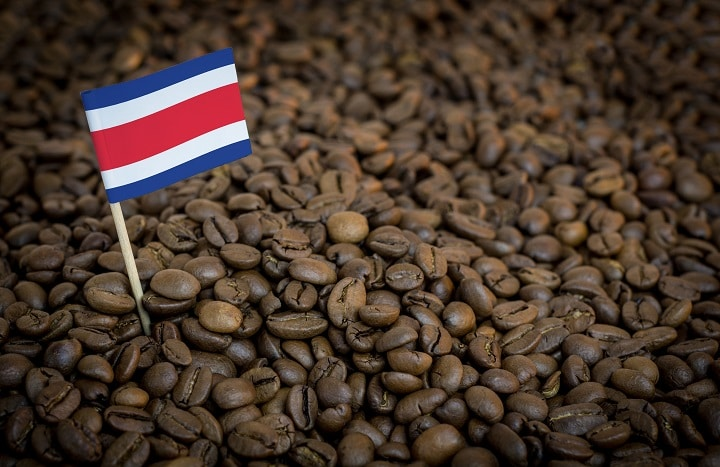 Best Costa Rican Coffees – Most Flavorful Coffee of All Times