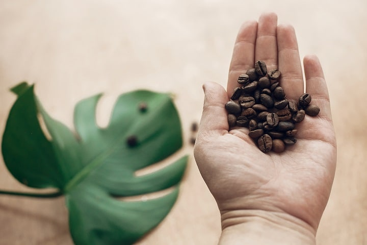Coffee Growing Regions of Costa Rica