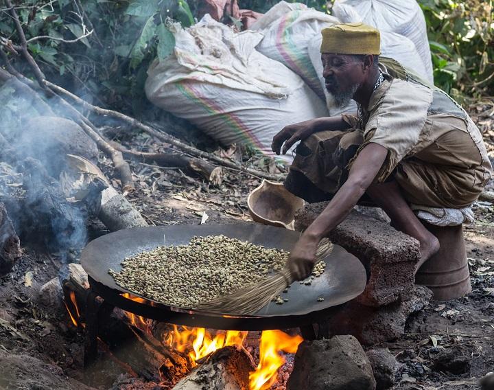 Ethiopian Coffee Production