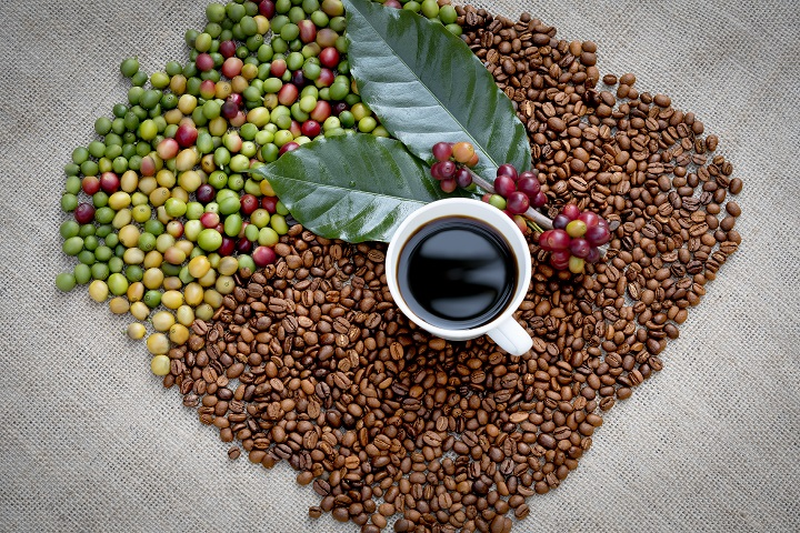 Kona Coffee – Exquisite Coffee With Crisp Aftertaste