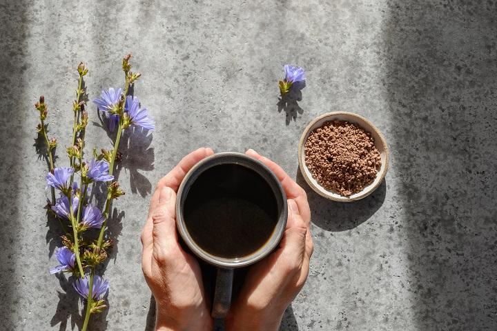 FAQ About Chicory Coffee